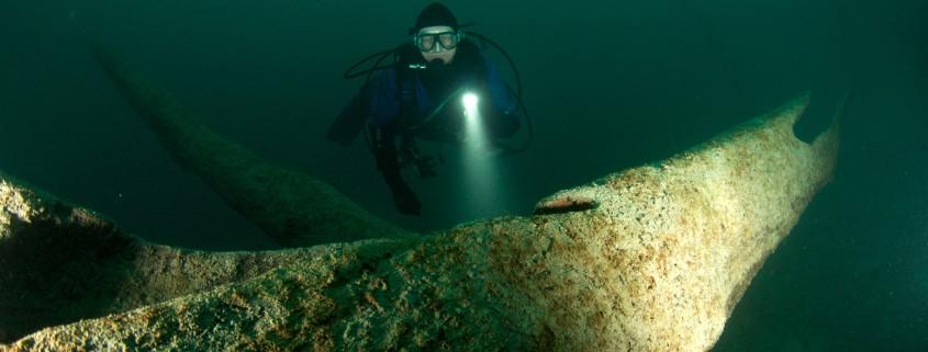 Attersee Unterwasserwald 1